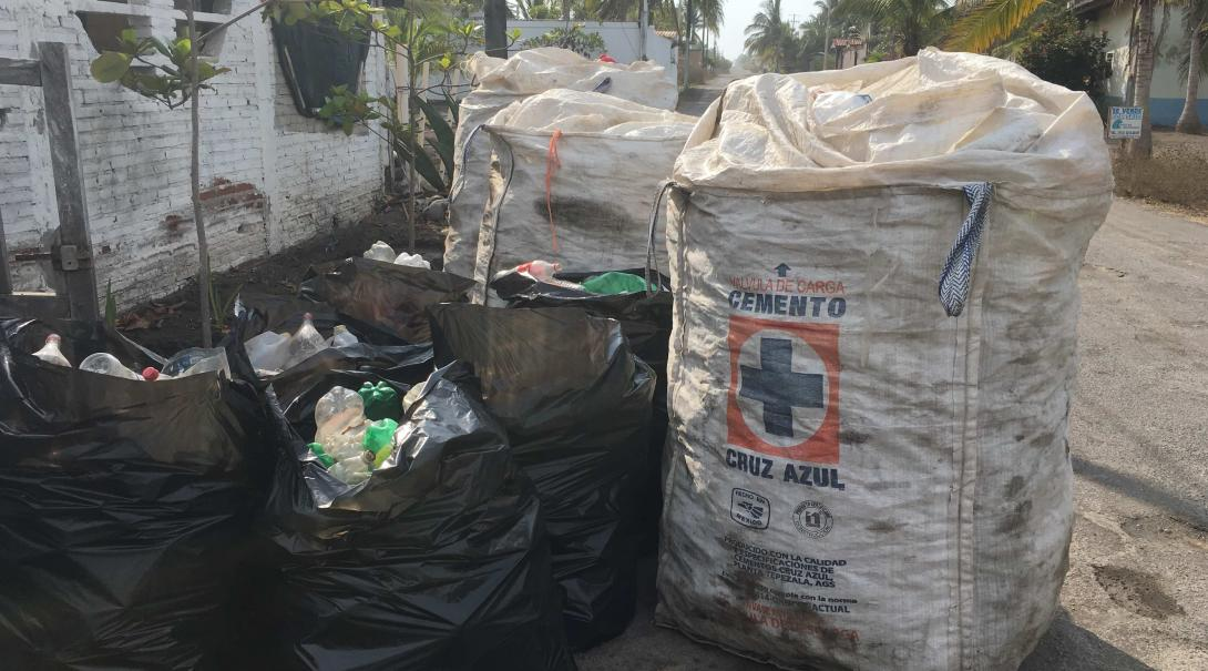 Botellas plásticas recolectadas por voluntarios ambientales en México.